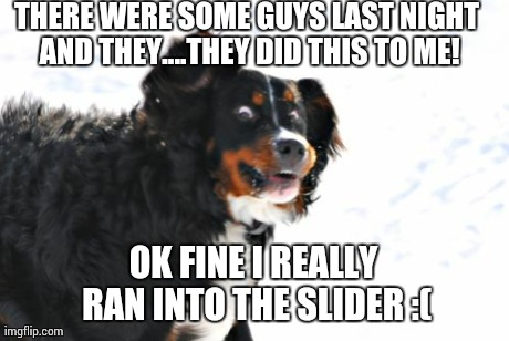 Crazy Dawg | THERE WERE SOME GUYS LAST NIGHT AND THEY....THEY DID THIS TO ME! OK FINE I REALLY RAN INTO THE SLIDER :( | image tagged in memes,crazy dawg | made w/ Imgflip meme maker