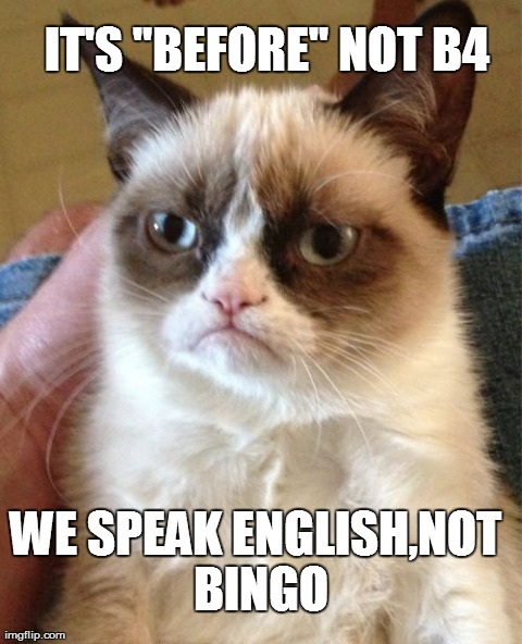 "Grumpy Cat | IT'S ""BEFORE"" NOT B4 WE SPEAK ENGLISH,NOT BINGO 