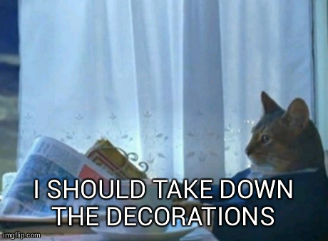 Cat Boat Meme