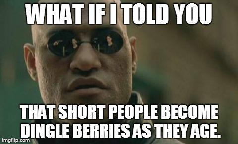 66kyj matrix morpheus meme imgflip,Short People Meme