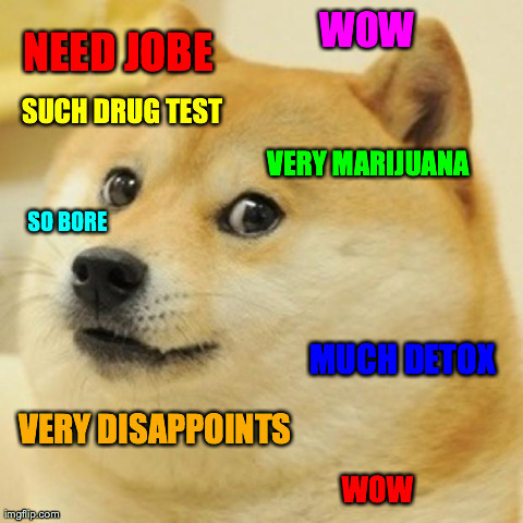 Doge Meme | WOW VERY DISAPPOINTS MUCH DETOX VERY MARIJUANA SUCH DRUG TEST SO BORE WOW NEED JOBE | image tagged in memes,doge,AdviceAnimals | made w/ Imgflip meme maker