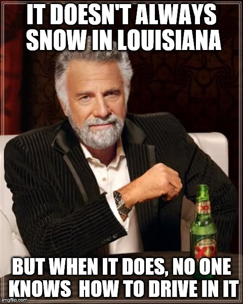 Seriously, every driver turns into an idiot | IT DOESN'T ALWAYS SNOW IN LOUISIANA BUT WHEN IT DOES, NO ONE KNOWS  HOW TO DRIVE IN IT | image tagged in memes,the most interesting man in the world,louisiana,snow,woman drivers | made w/ Imgflip meme maker