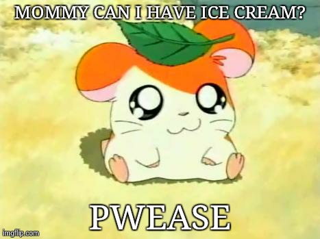 Hamtaro | MOMMY CAN I HAVE ICE CREAM? PWEASE | image tagged in memes,hamtaro | made w/ Imgflip meme maker