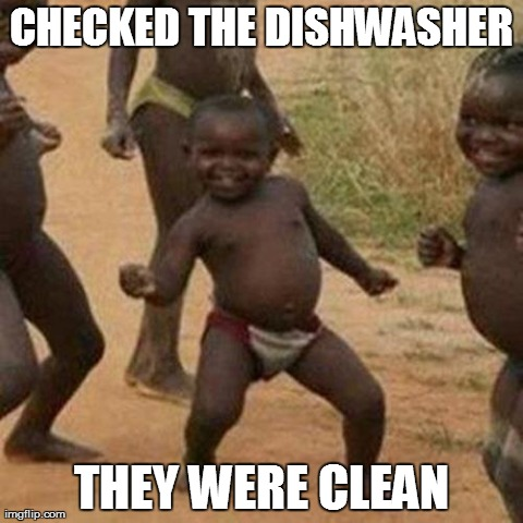 Third World Success Kid | CHECKED THE DISHWASHER THEY WERE CLEAN | image tagged in memes,third world success kid | made w/ Imgflip meme maker