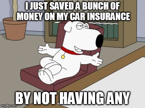 Brian Griffin | I JUST SAVED A BUNCH OF MONEY ON MY CAR INSURANCE BY NOT HAVING ANY | image tagged in memes,brian griffin | made w/ Imgflip meme maker