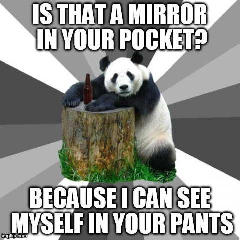 Pickup Line Panda | IS THAT A MIRROR IN YOUR POCKET? BECAUSE I CAN SEE MYSELF IN YOUR PANTS | image tagged in memes,pickup line panda | made w/ Imgflip meme maker