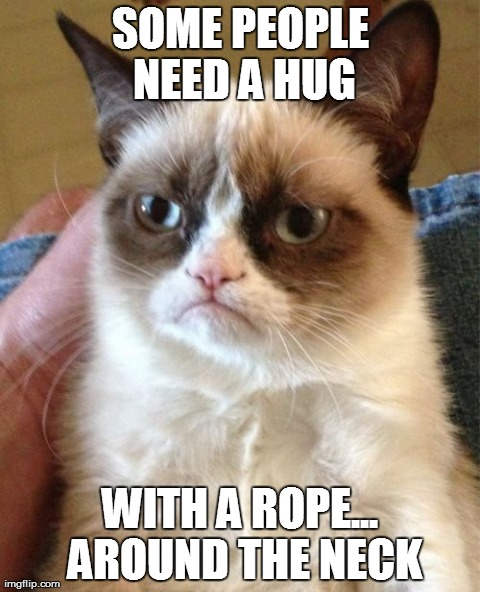Grumpy Cat Meme | SOME PEOPLE NEED A HUG WITH A ROPE... AROUND THE NECK | image tagged in memes,grumpy cat | made w/ Imgflip meme maker