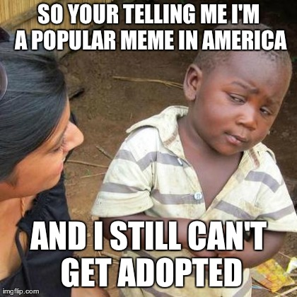 Third World Skeptical Kid Meme | SO YOUR TELLING ME I'M A POPULAR MEME IN AMERICA AND I STILL CAN'T GET ADOPTED | image tagged in memes,third world skeptical kid,memes | made w/ Imgflip meme maker