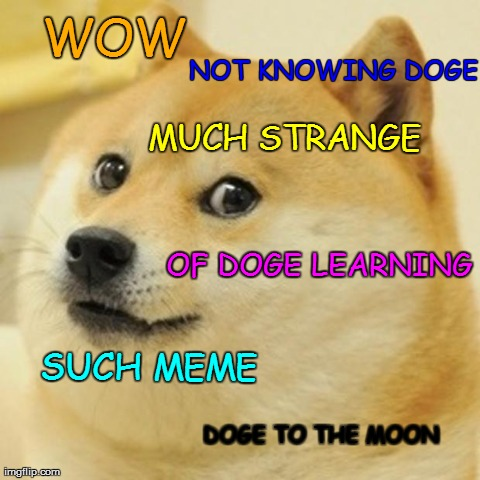 Doge Meme | WOW NOT KNOWING DOGE MUCH STRANGE SUCH MEME DOGE TO THE MOON OF DOGE LEARNING | image tagged in memes,doge | made w/ Imgflip meme maker