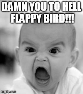 Angry Baby Meme | DAMN YOU TO HELL FLAPPY BIRD!!! | image tagged in memes,angry baby | made w/ Imgflip meme maker