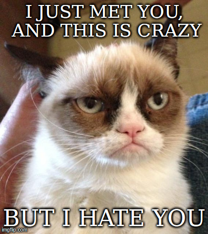 I JUST MET YOU, AND THIS IS CRAZY BUT I HATE YOU | image tagged in memes,grumpy cat,funny,cats,AdviceAnimals | made w/ Imgflip meme maker