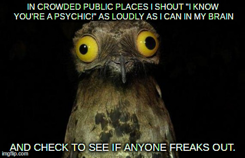 "Weird Stuff I Do Potoo Meme | IN CROWDED PUBLIC PLACES I SHOUT ""I KNOW YOU'RE A PSYCHIC!"" AS LOUDLY AS I CAN IN MY BRAIN AND CHECK TO SEE IF ANYONE FREAKS OUT. 