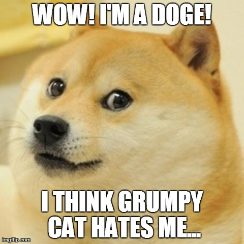 Grumpy Cat Doge Memes