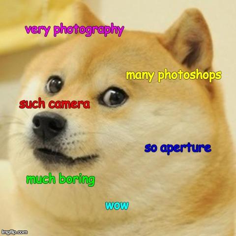 Doge Meme Imgflip