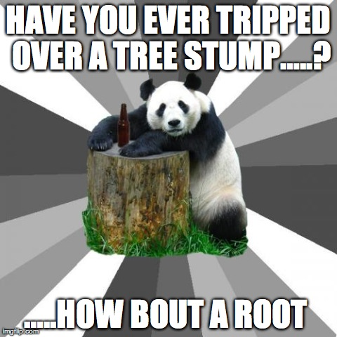 Pickup Line Panda | HAVE YOU EVER TRIPPED OVER A TREE STUMP…..? …..HOW BOUT A ROOT | image tagged in memes,pickup line panda | made w/ Imgflip meme maker