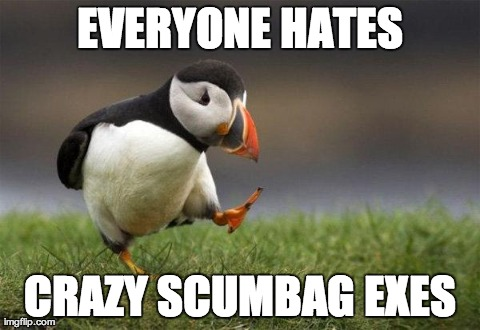 Popular opinion puffin | EVERYONE HATES CRAZY SCUMBAG EXES | image tagged in popular opinion puffin,AdviceAnimals | made w/ Imgflip meme maker