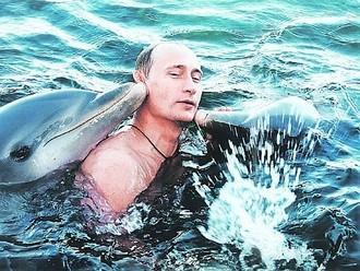 High Quality Putin Dolphins Blank Meme Template