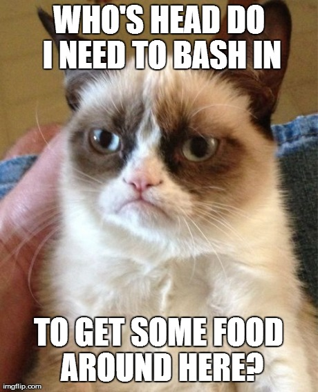 Grumpy Cat Meme | WHO'S HEAD DO I NEED TO BASH IN TO GET SOME FOOD AROUND HERE? | image tagged in memes,grumpy cat | made w/ Imgflip meme maker