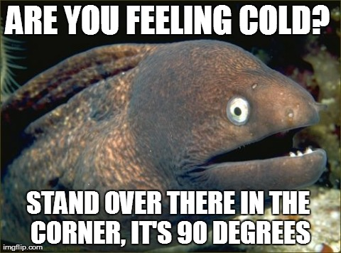 Bad Joke Eel Meme | ARE YOU FEELING COLD?  STAND OVER THERE IN THE CORNER, IT'S 90 DEGREES | image tagged in memes,bad joke eel,AdviceAnimals | made w/ Imgflip meme maker