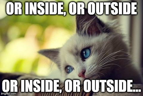 First World Problems Cat | OR INSIDE, OR OUTSIDE OR INSIDE, OR OUTSIDE... | image tagged in memes,first world problems cat | made w/ Imgflip meme maker