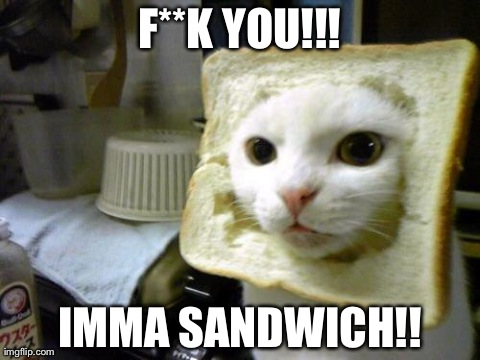 F**K YOU!!! IMMA SANDWICH!! | image tagged in cats,funny | made w/ Imgflip meme maker