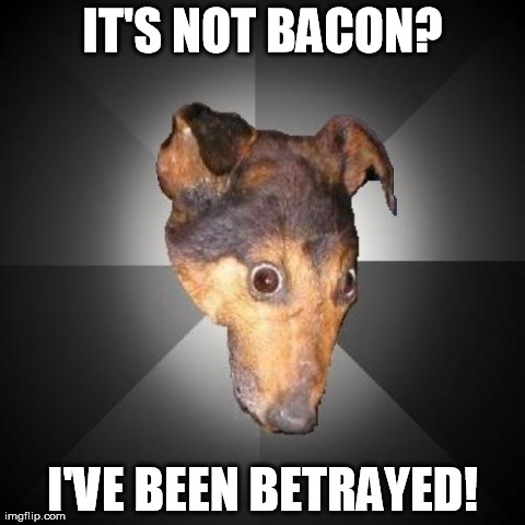 The dog who DOES know it's not bacon. | IT'S NOT BACON? I'VE BEEN BETRAYED! | image tagged in memes,depression dog | made w/ Imgflip meme maker