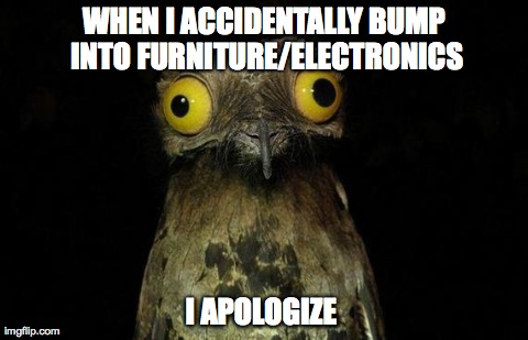 WHEN I ACCIDENTALLY BUMP INTO FURNITURE/ELECTRONICS I APOLOGIZE | image tagged in pootoo bird,AdviceAnimals | made w/ Imgflip meme maker