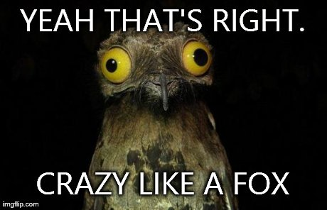 Weird Stuff I Do Potoo Meme | YEAH THAT'S RIGHT. CRAZY LIKE A FOX | image tagged in memes,weird stuff i do potoo | made w/ Imgflip meme maker