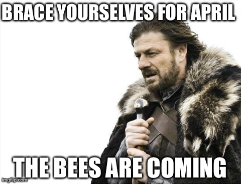 Brace Yourselves X is Coming Meme | BRACE YOURSELVES FOR APRIL THE BEES ARE COMING | image tagged in memes,brace yourselves x is coming | made w/ Imgflip meme maker