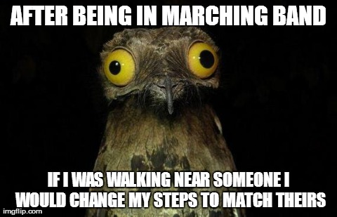 You should of seen me following the Principle in the hallway | AFTER BEING IN MARCHING BAND IF I WAS WALKING NEAR SOMEONE I WOULD CHANGE MY STEPS TO MATCH THEIRS | image tagged in memes,weird stuff i do potoo,marching band,funny | made w/ Imgflip meme maker