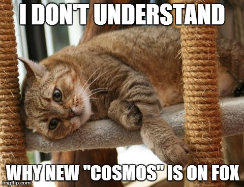 "First World Cat Problems | I DON'T UNDERSTAND WHY NEW ""COSMOS"" IS ON FOX 
