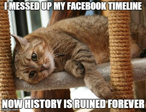 First World Cat Problems | I MESSED UP MY FACEBOOK TIMELINE NOW HISTORY IS RUINED FOREVER | image tagged in first world cat problems | made w/ Imgflip meme maker