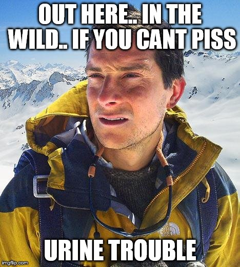 Bear Grylls | OUT HERE.. IN THE WILD.. IF YOU CANT PISS URINE TROUBLE | image tagged in memes,bear grylls | made w/ Imgflip meme maker