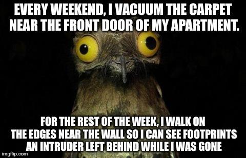 Weird Stuff I Do Potoo Meme Every Weekend Vacuum The Carpet Near
