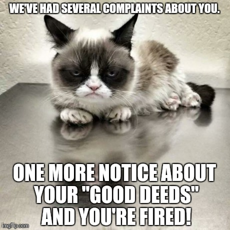 "Grumpy cat office | WE'VE HAD SEVERAL COMPLAINTS ABOUT YOU. ONE MORE NOTICE ABOUT YOUR ""GOOD DEEDS"" AND YOU'RE FIRED! 