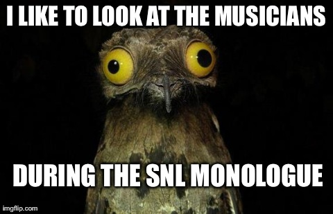 weird stuff i do pootoo | I LIKE TO LOOK AT THE MUSICIANS DURING THE SNL MONOLOGUE | image tagged in weird stuff i do pootoo,AdviceAnimals | made w/ Imgflip meme maker