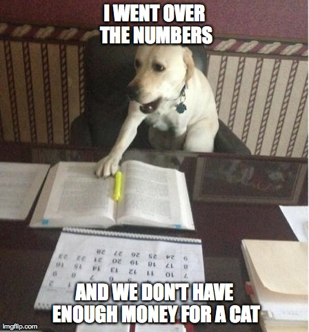 I WENT OVER THE NUMBERS AND WE DON'T HAVE ENOUGH MONEY FOR A CAT | image tagged in mad dog | made w/ Imgflip meme maker