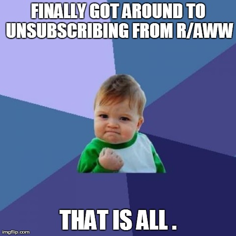 Success Kid Meme | FINALLY GOT AROUND TO UNSUBSCRIBING FROM R/AWW THAT IS ALL . | image tagged in memes,success kid,AdviceAnimals | made w/ Imgflip meme maker