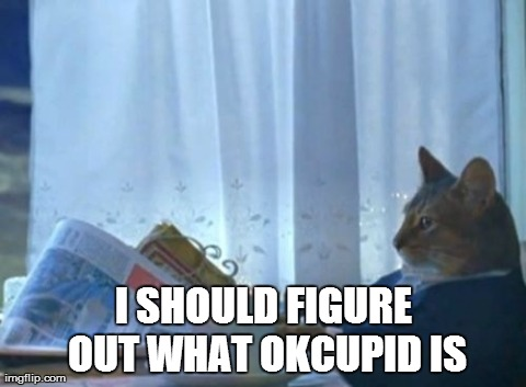 I Should Buy A Boat Cat Meme | I SHOULD FIGURE OUT WHAT OKCUPID IS | image tagged in memes,i should buy a boat cat,AdviceAnimals | made w/ Imgflip meme maker
