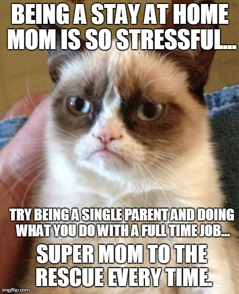 Grumpy Cat Meme | BEING A STAY AT HOME MOM IS SO STRESSFUL... TRY ...
