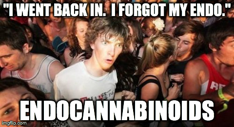 "Sudden Clarity Clarence Meme | ""I WENT BACK IN.  I FORGOT MY ENDO."" ENDOCANNABINOIDS 