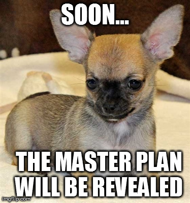 Master Dog | SOON...   THE MASTER PLAN WILL BE REVEALED | image tagged in funny,memes,animals,cute,puppies,hilarious | made w/ Imgflip meme maker