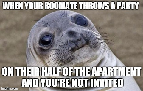 Awkward Sealion Meme | WHEN YOUR ROOMATE THROWS A PARTY  ON THEIR HALF OF THE APARTMENT AND YOU'RE NOT INVITED | image tagged in awkward sealion,AdviceAnimals | made w/ Imgflip meme maker