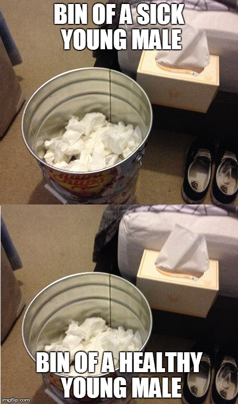 BIN OF A SICK YOUNG MALE BIN OF A HEALTHY YOUNG MALE | image tagged in funny | made w/ Imgflip meme maker