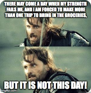 AragornNotThisDay | THERE MAY COME A DAY WHEN MY STRENGTH FAILS ME, AND I AM FORCED TO MAKE MORE THAN ONE TRIP TO BRING IN THE GROCERIES, BUT IT IS NOT THIS DAY | image tagged in aragornnotthisday | made w/ Imgflip meme maker