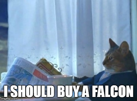 I Should Buy A Boat Cat Meme | I SHOULD BUY A FALCON | image tagged in memes,i should buy a boat cat | made w/ Imgflip meme maker