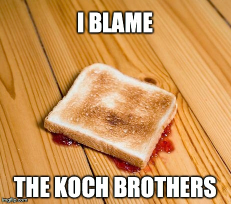 I BLAME THE KOCH BROTHERS | made w/ Imgflip meme maker