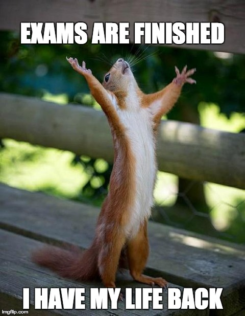 Law School Exams Imgflip