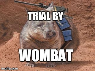 TRIAL BY WOMBAT | made w/ Imgflip meme maker