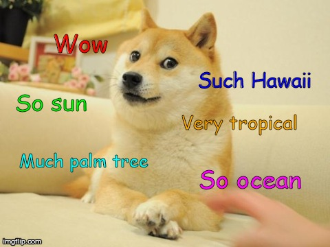Doge 2 Meme | Wow Such Hawaii So sun Much palm tree Very tropical So ocean | image tagged in memes,doge 2 | made w/ Imgflip meme maker